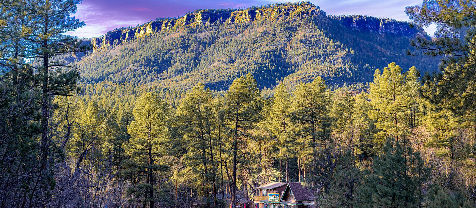 What Special Do You Get at Mountain Cabin in Payson?